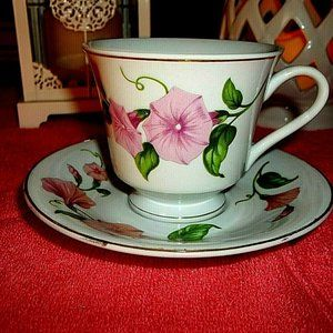 Unique white porcelain cup and saucer/roses